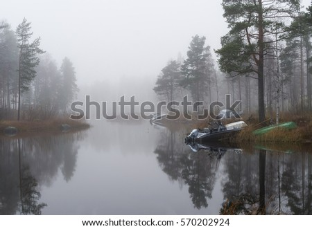 Fog. A few boats lie on the shore of the lake near some birch trees. #570202924