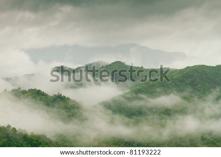 fog and cloud mountain valley landscape, Phetchabun,Thailand
