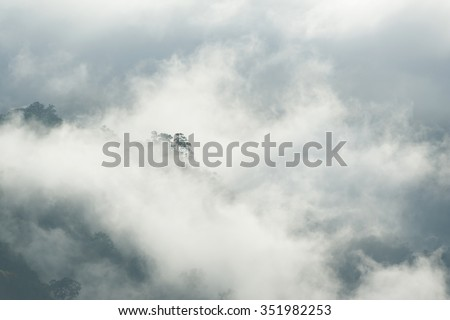 Fog and cloud mountain valley spring landscape #351982253