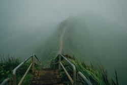 Fog covering Stairway to Heaven in Oahu island Hawaii. High quality photo