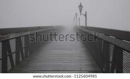Fog covers a bridge                                 #1125604985