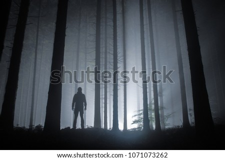 fog in a forest at night with mysterious silhouette and light in the distance