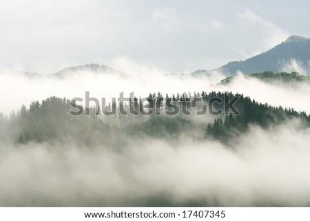 Fog in Avellaneda, Bizkaia (Spain) #17407345