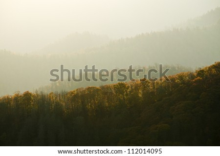 Fog in mountains in autumn