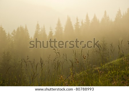 Fog is falling down on mountain. Nice background for desktop wallpaper.