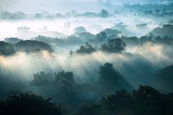 Fog Landscape  , Sunrise mornings landscape  , Chiang Mai Thailand