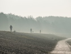 Fog on the dike at the North Sea