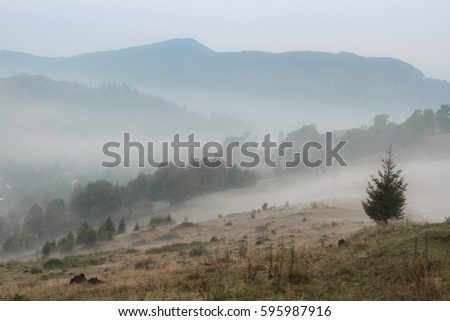Fog on the mountain. morning fog in the mountains. beautiful landscape with mountain view and morning fog on sunrise. amazing natural background. Sunrise   of dense fog.
