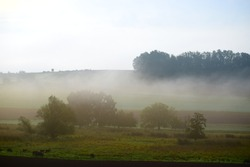 fog over a swampland valley in the Eifel