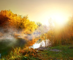 Fog over river in forest in the autumn