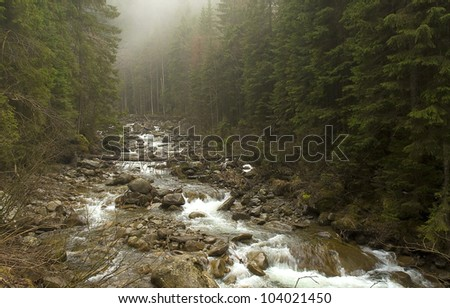 Fog over the river in the Ukrainian Carpathians