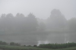 Fog over water in atmospheric monochrome blurred landscape with soft colors. Foggy gray calm and quiet nature. Silhouettes of trees in a dense foggy haze.