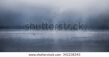 Fog rising the Ottawa River - horizontal divide of two environments - air and water creates a visual spectacle. Split blue horizon.  Blanket of fog lifting off the Ottawa River #342238343