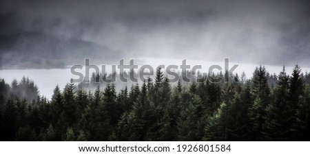 Fog rolling over Loch Tulla and coniferous forest in Scottish Highlands.Dark and moody landscape scenery.Scotland on a gloomy day. Foto stock ©