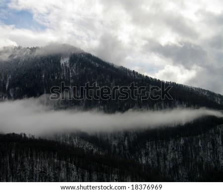 fog's tail - stock photo