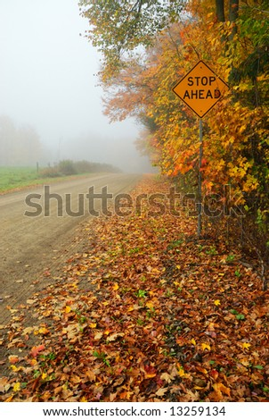 Foggy autumn rural road