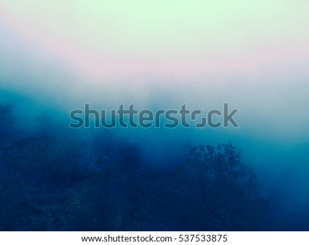 Foggy Forest Background with autumn filtered colors Ideal as a background for quotes or inspirational typographic text #537533875