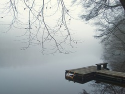 Foggy lake landscape with landing stage for boat. Lake, water and tree in the fog. Mystic trees under milky sky in the winter. Silent ambience. Germany, Brandenburg.
