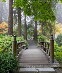 Foggy Morning by Wooden Foot Bridge at Japanese Garden in Autumn