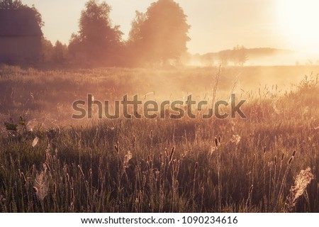 foggy morning in rural field at sunrise. natural summer (spring) background #1090234616