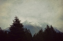 Foggy mountain landscape in the PNW. Pacific Northwest, Washington state, gray, foggy, nature photography with evergreen silhouette.