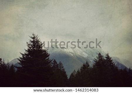 Foggy mountain landscape in the PNW. Pacific Northwest, Washington state, gray, foggy, nature photography with evergreen silhouette. #1462314083