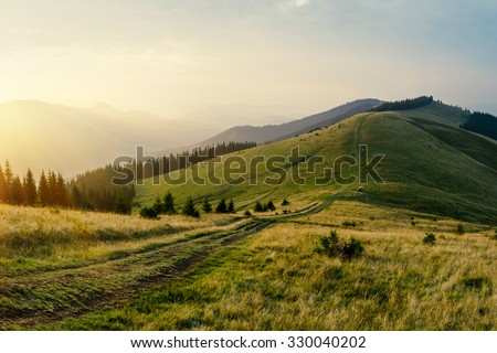 Foggy mountain road goes on top of the hills on sunset landscape. Sunbeams through the trees.