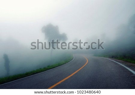 foggy road in mexico