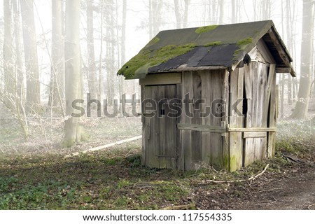 foggy scenery includinga old ramshackle wooden shack in the forest
