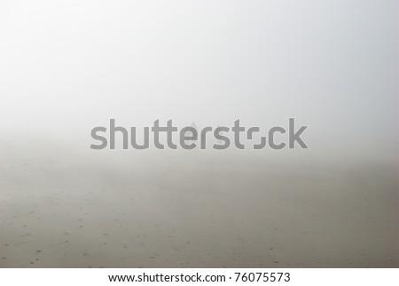 Foggy Seaside - stock photo