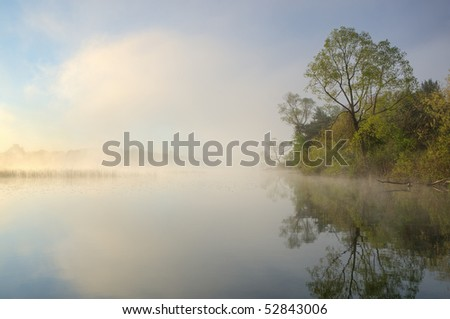 Foggy, spring shoreline of Whitford Lake, Fort Custer State Park, Michigan, USA