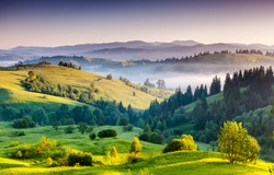 Foggy summer morning in the mountains. Carpathian, Ukraine, Europe. Beauty world.