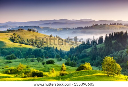 Foggy summer morning in the mountains. Carpathian, Ukraine, Europe. Beauty world.