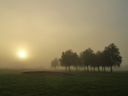 Foggy sunrise on a golf course