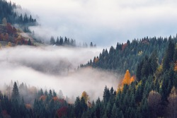 Foggy sunrise over the mountain forest in autumn. Beautiful rural landscape.
