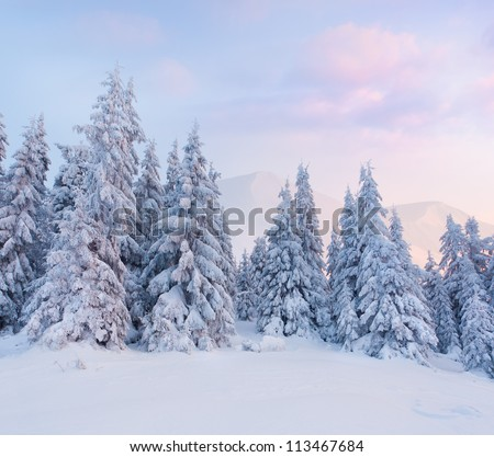 Foggy winter landscape in the mountains Sunrise