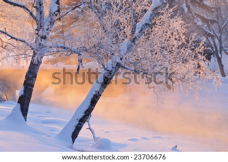 Foggy winter landscape with frosted trees at sunrise Portage Creek, Milham Park, Michigan, USA