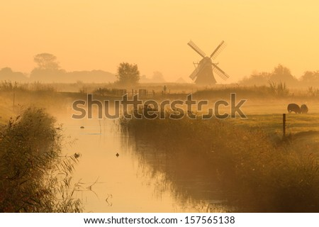 Stock Photo foggy, yellow morning in a typical Dutch landscape with a traditional windmill.