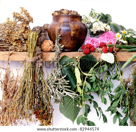 folk medicine.green pharmacy. alternative medicine.shelf of witch-doctor