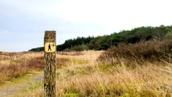Follow the wooden signpost directions for a beautiful hike on the Dutch island Ameland in the Wadden sea