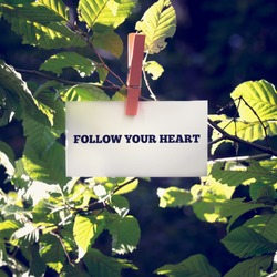 Follow your heart motivational message on a white card hanging by a clothes peg from a green leafy branch outdoors, toned retro effect.