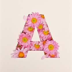 Font design, Abstract alphabet font with pink flower, realistic flower typography - A