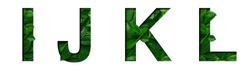 Font leafs I,J,K,L made of Real alive leafs with Precious paper cut shape. Leafs fonts collection set.