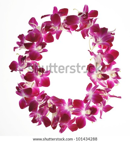 Font made of orchid - Letter O - stock photo