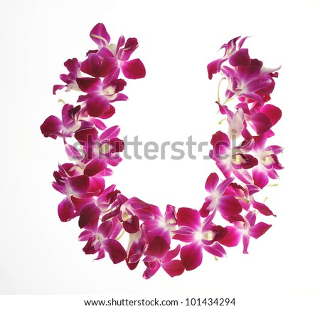 Font made of orchid - Letter  U