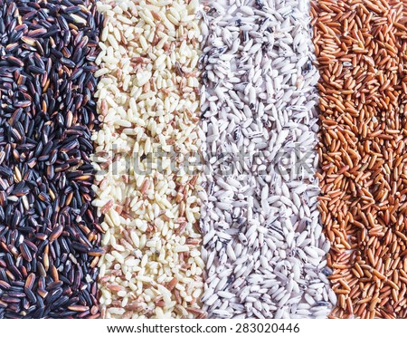 Food background with of rice variety . rice mixture. brown rice, black rice, white rice,red rice.