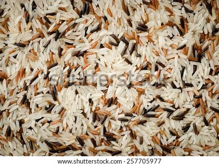 Food background with three mixed of Thai rice varieties : brown rice, mixed wild rice, white (jasmine) rice. species Oryza sativa.