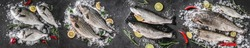Food collage of various fresh fish, white fish pangasius, salmon red fish, trout, dorado, carp with ice and spices on dark stone background. Creative layout made of seafood, top view