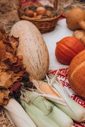 food corn autumn bountiful harvest