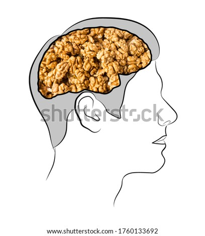 Food for brain, the human brain from the walnuts. Human silhouette with shelled walnuts on white background. Walnuts in shape of human brain. Walnut resembling brain.